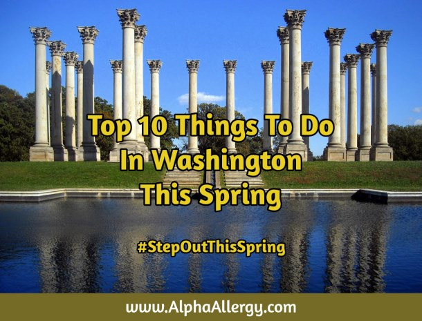 Things To Do In DC Springtime