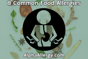 8 common food allergies graphic